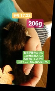 20180909200914820.jpg